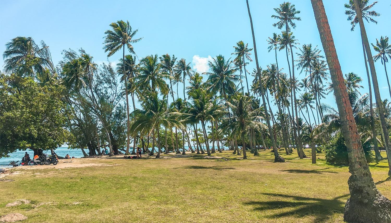 moorea activites et lieux incontournables plage tahiamanu