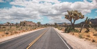 road trip en californie joshua tree