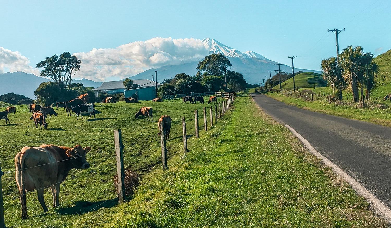travailler en voyageant pvt nouvelle zélande