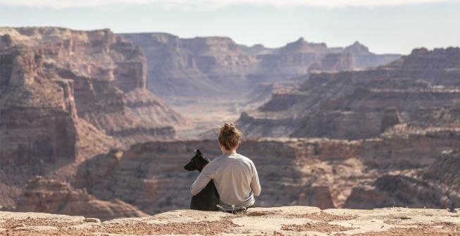 voyager avec son chien chat
